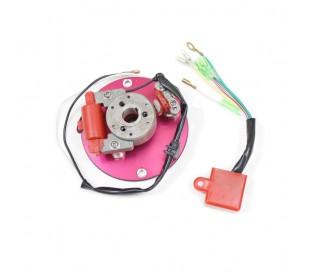 Rotor + CDI 4t