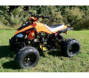 Atv Quad BIG FOOD 125cc 4t con mando