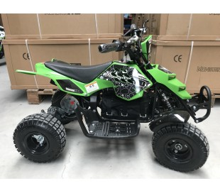 Mini ATV Raptor 500W