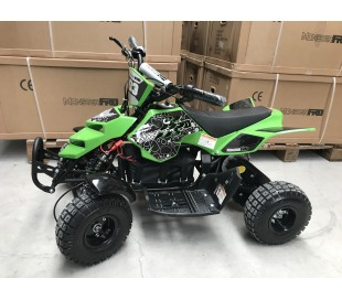 Mini ATV Raptor Electrics