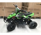 Mini Quad Raptor electrico