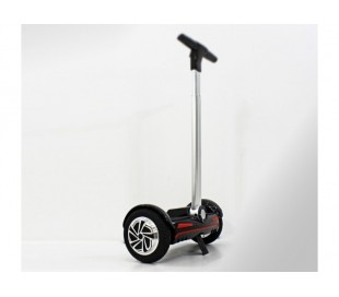 Mini self segway 700W