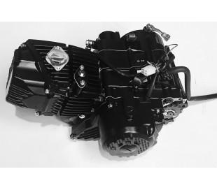 New Z190cc 2v black foot