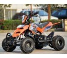 Pocket Atv Raptor R4 49cc 2t